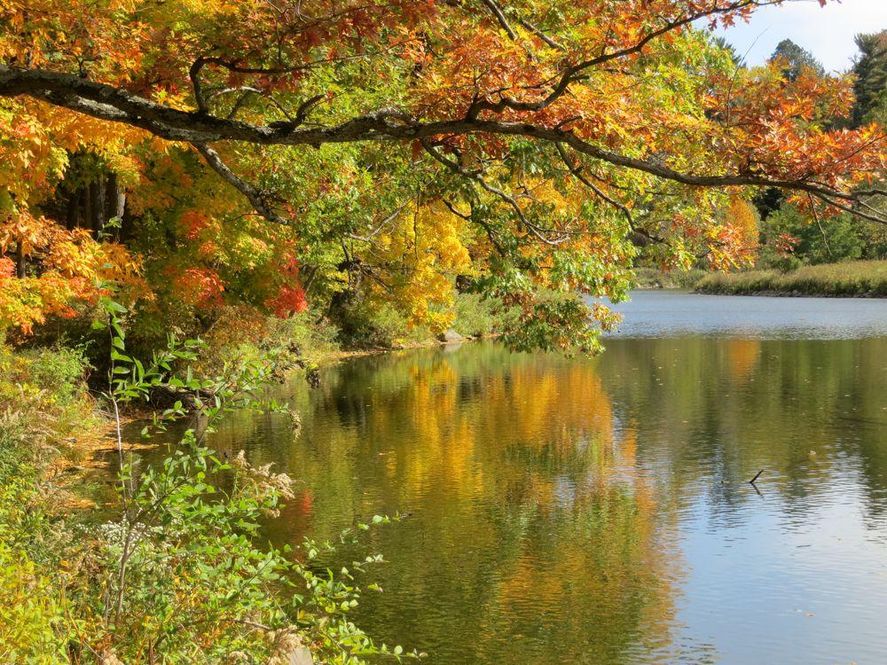 Beebe lake