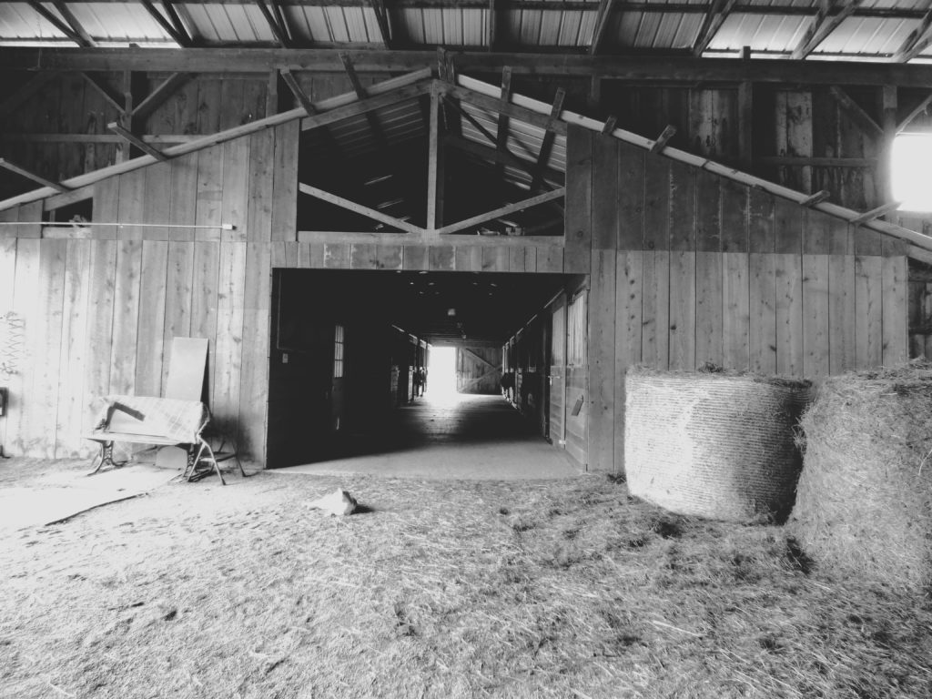 stables in Brooktondale 3